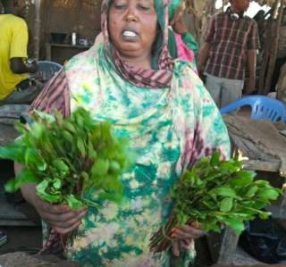 SomaliaReport: The Khat Conundrum